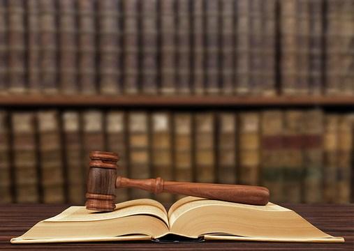 Illinois Legislature to Protect Against Rogue Guardians