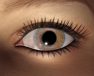 Keeping an Eye on Eyesight as You Get Older