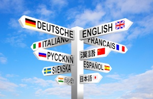 Language Barriers and LTC Growing Concern